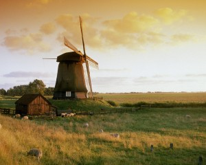 Nature of Netherlands